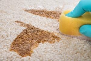 Teppichpflege